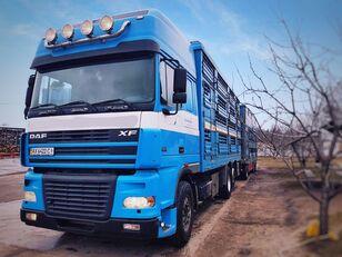 gyvulių pervežimo sunkvežimis PEZZAIOLI + priekaba gyvuliams vezti